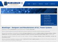 Blueginger (Pty) Ltd's website