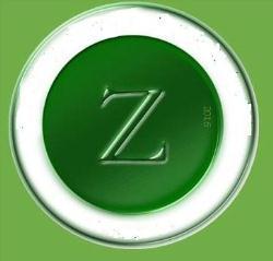 ZARMAN HOLDING (PTY) LTD