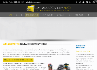 Data Recovery Pro's website