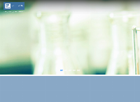 Zestcor Eleven Pty Ltd's website